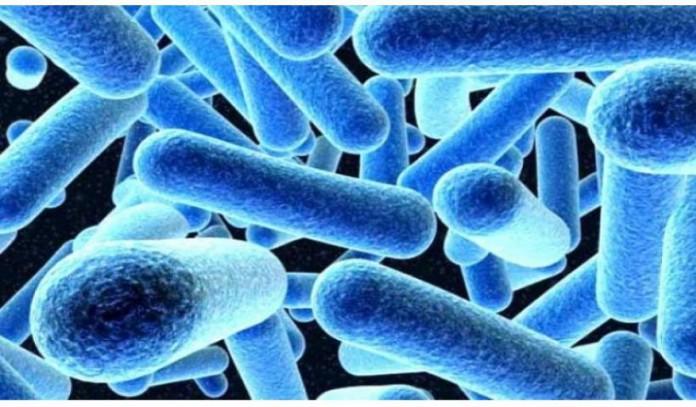 Ο ΟΟΣΑ προειδοποιεί: Χιλιάδες νεκροί στην Ελλάδα μέχρι το 2050 λόγω ανθεκτικών μικροβίων στα αντιβιοτικά