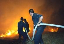 Λάρισα: Φωτιά σε ποιμνιοστάσιο