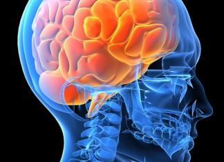 Έρευνα: Το χαμηλό εισόδημα επηρεάζει τον εγκέφαλο σε οποιαδήποτε ηλικία