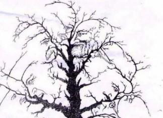δένδρο, ΚΟΥΙΖ,«κρυμμένα» πρόσωπα.