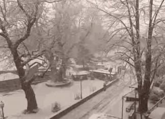 Στα λευκά πολλές περιοχές της χώρας - Πού υπάρχουν προβλήματα λόγω παγετού