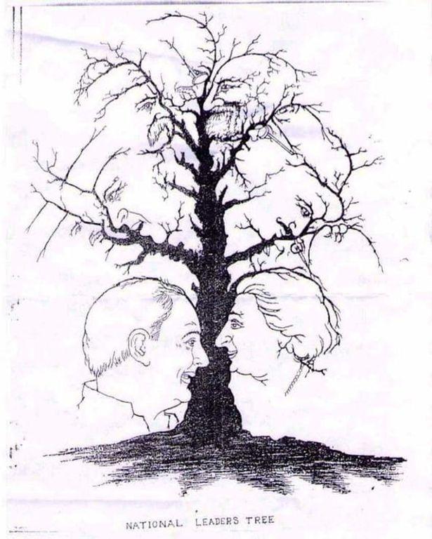 δένδρο, ΚΟΥΙΖ, «κρυμμένα» πρόσωπα,