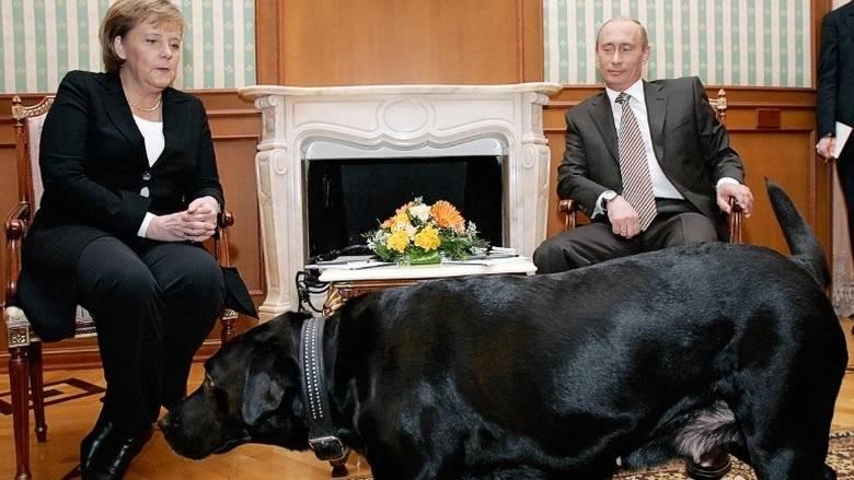 Μέρκελ, φοβάται, σκυλιά,