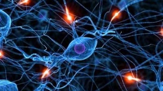 γονείς, βλαστοκύτταρα, «Stem Health Hellas», Λευτέρης Ζαγορίτης,