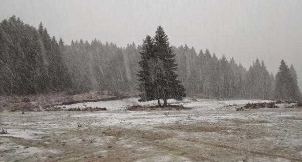 Τρίκαλα, χιόνι,