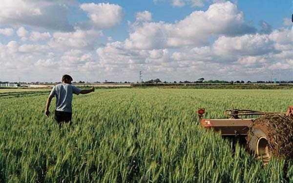 αγρότης, λογαριασμός, χρωστάει, 1 δισ ευρώ,