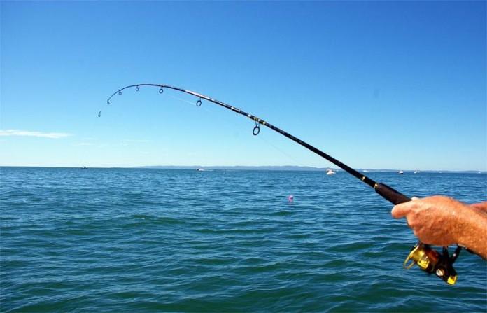 Απαγόρευση αλιείας από 1 έως 31 Μαΐου στη Περιφέρεια Ηπείρου
