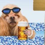 μπυρα