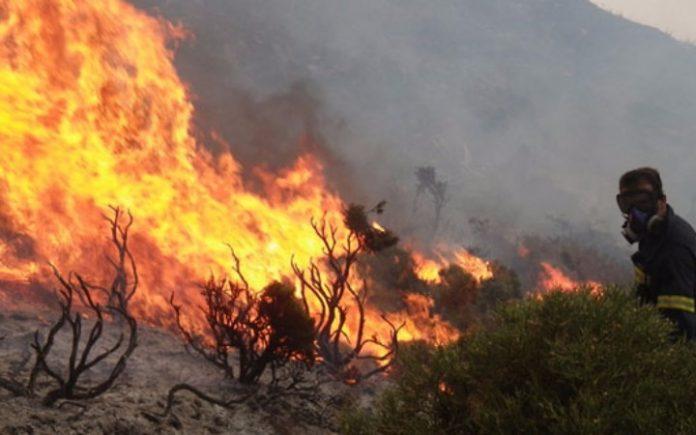 Ρέθυμνο: Φωτιά σε δάσος κοντά σε οικισμό