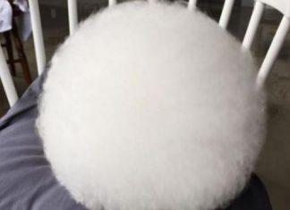άσπρη μπάλα, διαδίκτυο,