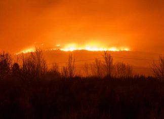 Κύπρος, φωτιά, οδύνη,