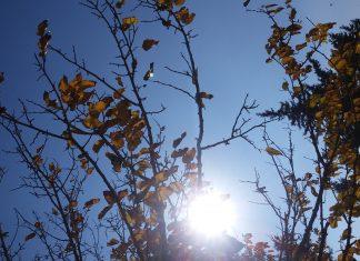 ιούνιος, φετινός, 2016, θερμότερος, ζεστη