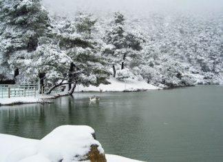 λίμνη Μπελέτση, Αθήνα, Πάρνηθα