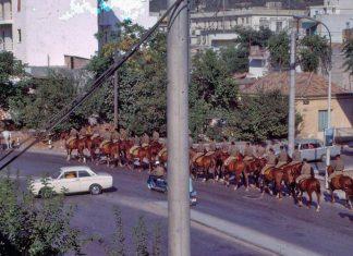 Αθήνα, 1960, στρατιώτες, Ιππικού,