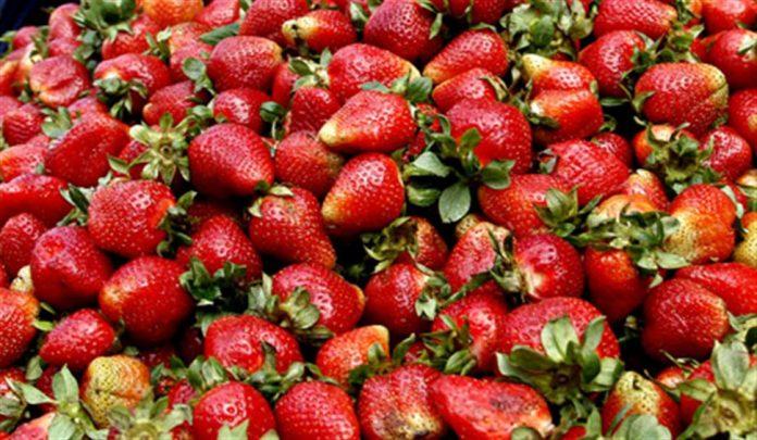 Βόλος: Βρήκαν απαγορευμένο φυτοφάρμακο σε φράουλες
