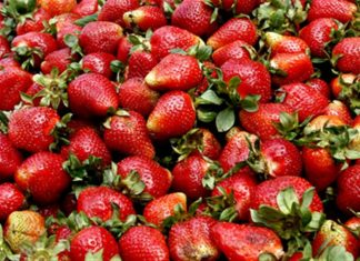 φλιτζάνι, φράουλες,