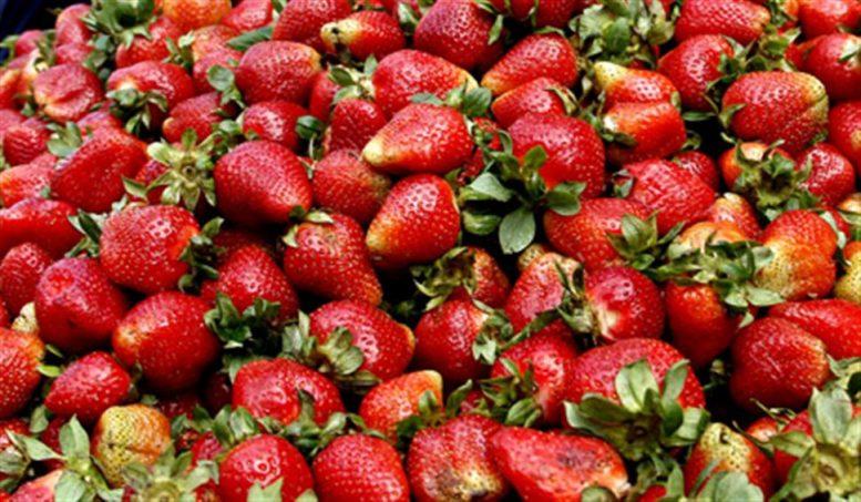 Δεσμεύτηκαν πάνω από 2 τόνοι φρούτων σε επιχείρηση στην περιοχή του Ρέντη