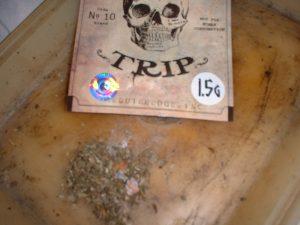 Head_Trip