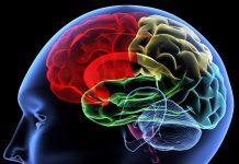 Αυτά είναι τα 10 πράγματα που αποδυναμώνουν την μνήμη