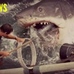 20. jaws