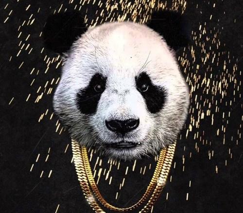 20 Songs, Desiigner – 'Panda',