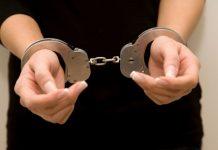 Κάρυστος - φωτιά: Για εμπρησμό από πρόθεση συνελήφθη μια γυναίκα