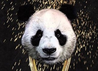 20 Songs, Desiigner – 'Panda',
