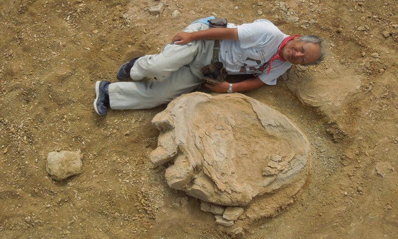 τιτανόσαυρος, δεινόσαυρος, ερευνητές,