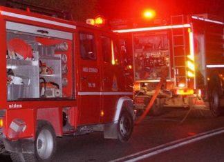 Λάρισα: Σε πλήρη έλεγχο βρίσκεται η πυρκαγιά στην περιοχή της Καρίτσας
