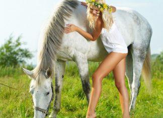 ανέκδοτο, ξανθιά, άλογο,
