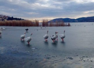πάγωσαν, λίμνες, Καστοριά, Χειμαδίτιδα,