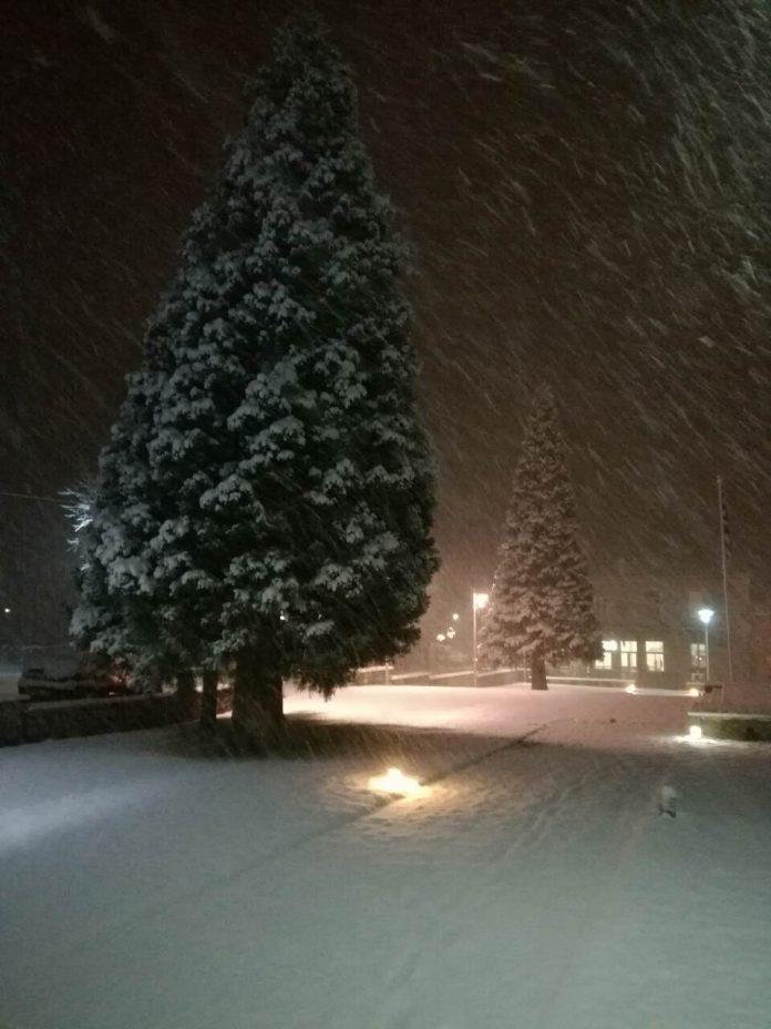 Φθιώτιδα, χιονόπτωση,