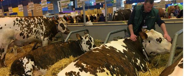 Εκλογές, Γαλλία, παραγωγοί, γάλα,