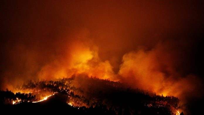 Πορτογαλία, νεκροί, φωτιά, Λεϊρία,