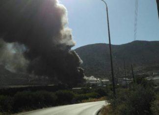 πυρκαγιά, εργοστάσιο, Οινόφυτα, τραυματίες,