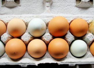 διαφορά, καφέ, άσπρα, αυγά,