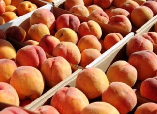 Δήμος Φλώρινας, δωρεάν, φρούτα,