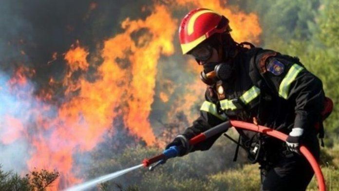Ζάκυνθος, φωτιά, αυλές, σπίτια,