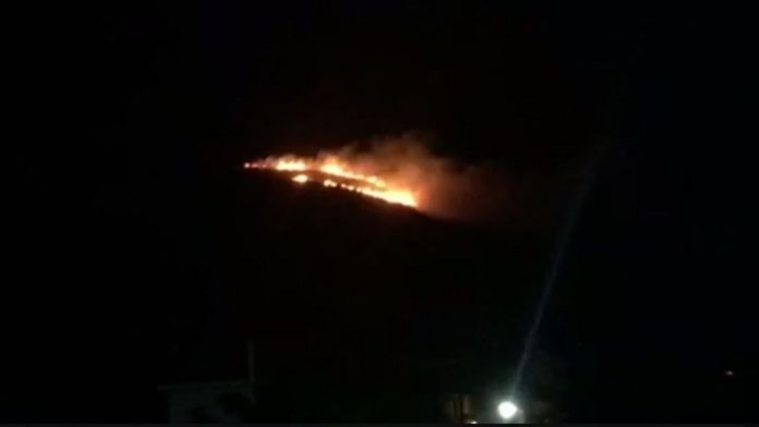 Καίγεται το προστατευόμενο δάσος της Στροφυλιάς