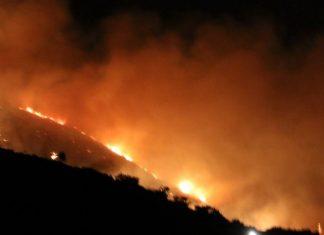 Σάμος: Μεγάλη φωτιά έχει ξεσπάσει σε δασική έκταση