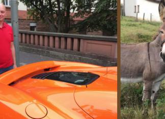 γάιδαρος, McLaren, πείναγε, καρότο,