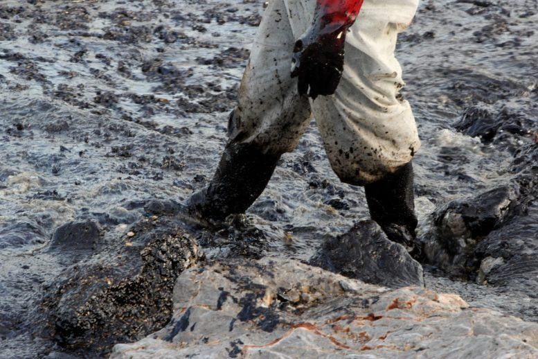 Σαλαμίνα, οικολογική καταστροφή, πετρελαιοκηλίδα, Πειραιάς,