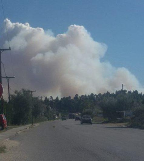 ,Χαλκιδική, φωτιά, απειλούνται σπίτια,