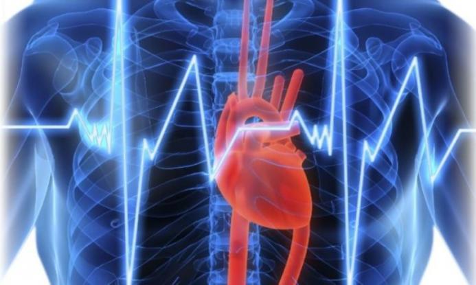 Υψηλότερη η θνησιμότητα από καρδιακή αρρυθμία στις πλουσιότερες ευρωπαϊκές χώρες