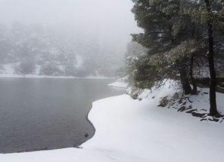 Αρνιακός: «Το χιόνι θα φτάσει ως τη θάλασσα»