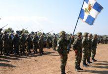 Κοινά εξοπλιστικά προγράμματα Ελλάδας–Κύπρου