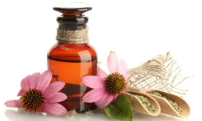 Το βότανο που κάνει «θαύματα» στην υγεία!
