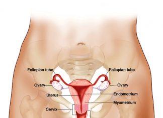 HPV DNA: Εναλλακτική λύση για το 65-70% των γυναικών στην Ελλάδα