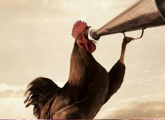 Τατσόπουλος part (2): «Είμαι αριστερός ελευθέρας βοσκής, κόκορας αλανιάρης».