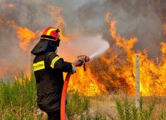 Βοιωτία: Φωτιά στις Πλαταιές – Ισχυροί άνεμοι πνέουν στην περιοχή